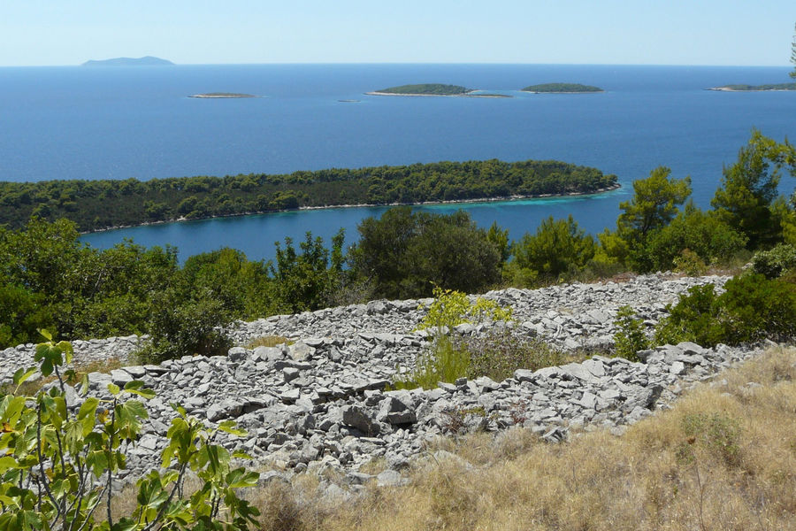 karbuni-stone-terraces-olives