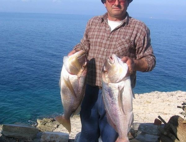 alesa-fishing-04