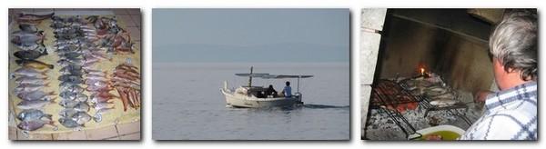 alesa-fishing-09