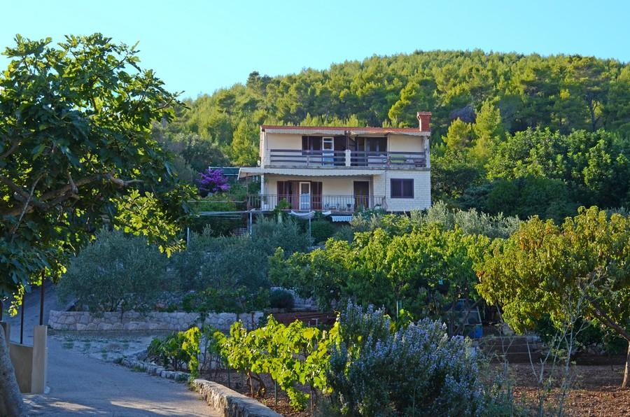 -Appartements-dinka-maison Korcula-Prizba-09-2015-PIC-03