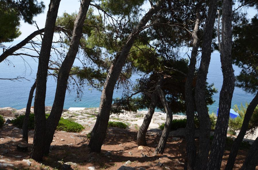 Korčula-Prižba-Apartmani-Brooke d-franica-plaže-05
