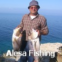 alesa-sport-fishing-champion