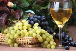 apartments-sarenko-vine-olive-oil-09