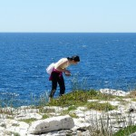 korcula-larus-off-season-activities-01