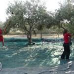 korcula-larus-off-season-activities-05