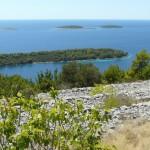 Korcula-Larus-off-Season-Stunning-Landscape-01