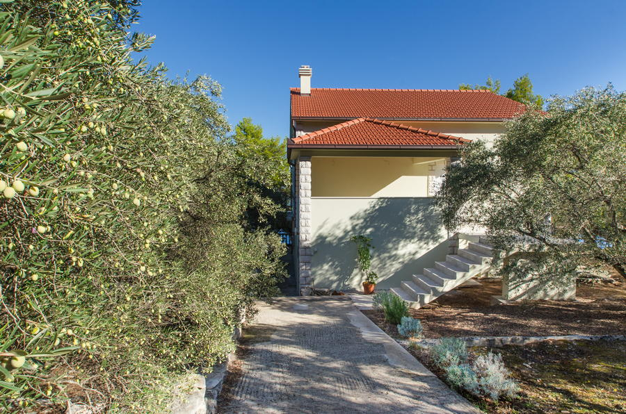 Korcula-Crnja-luka-Apartment-Danijela-Olive-Grove-Garden-10-2017-pic-1