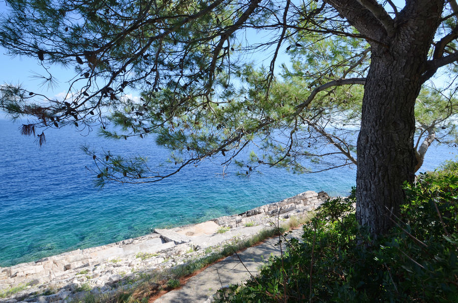 Korcula-Holiday-House-Prigradica-Vlaho-Beach-08