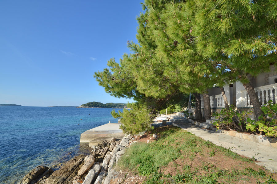 korcula-karbuni-apartments-bosnic-house-01