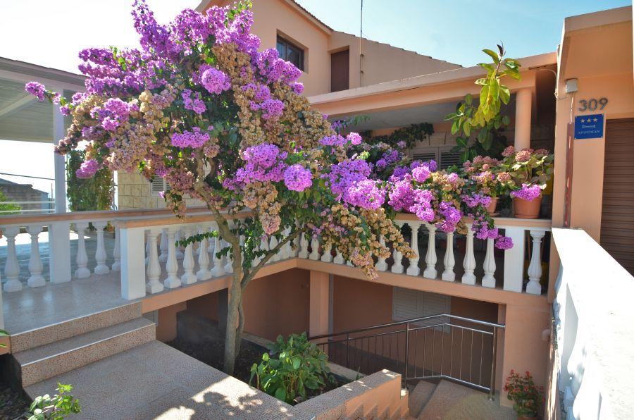 korcula-zavalatica-apartments-daniela-house-09-2016-pic-16