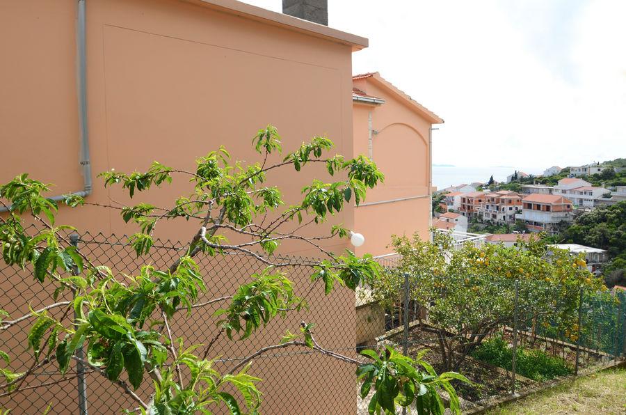 korcula-zavalatica-apartments-daniela-house-09