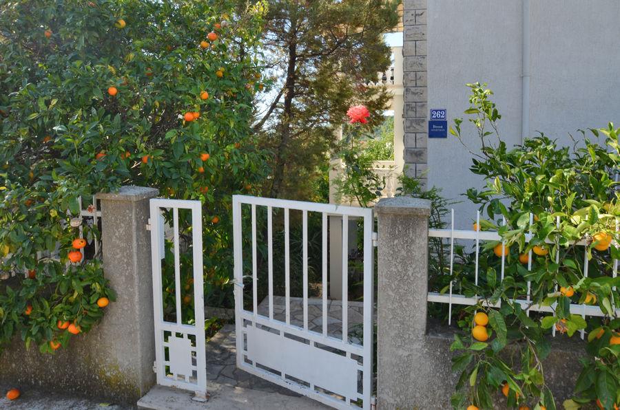 korcula-zavalatica-apartments-marijana-house-03