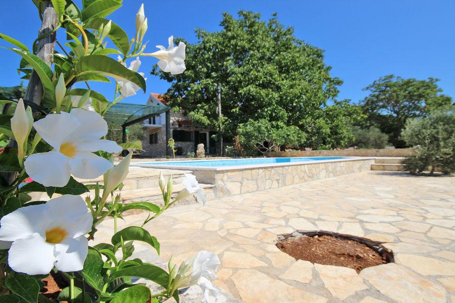 villa-katja-courtyard-tree-18
