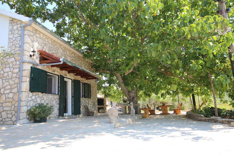 Villa-katja-cortile-albero-19