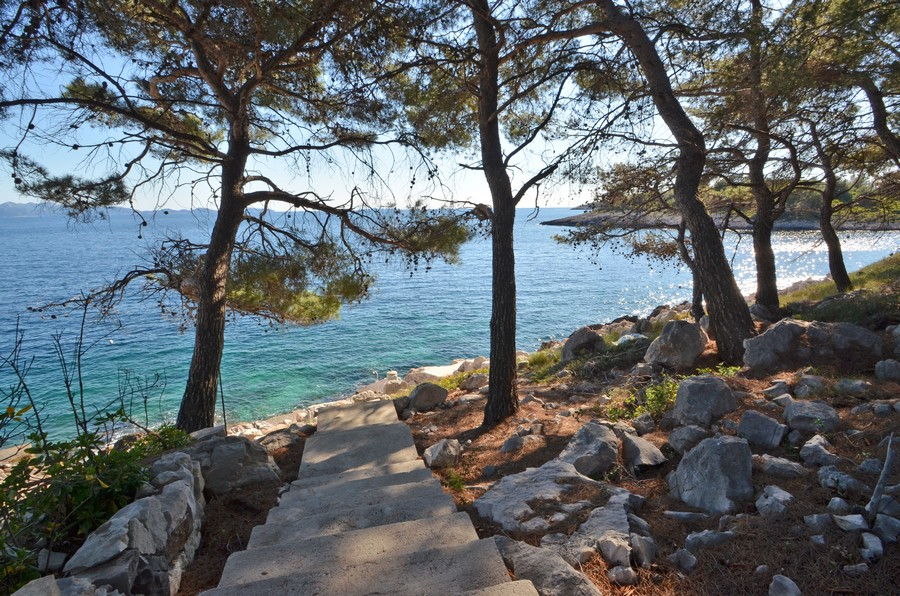 korcula-apartments-prizba-surjan-beach-01