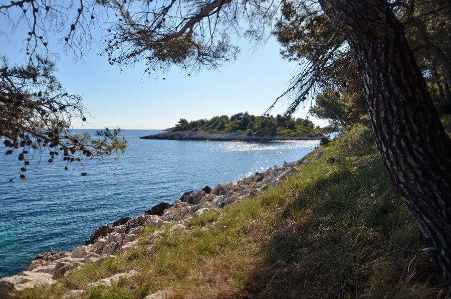 Korcula-Apartments-Prizba-Surjan-Beach-14