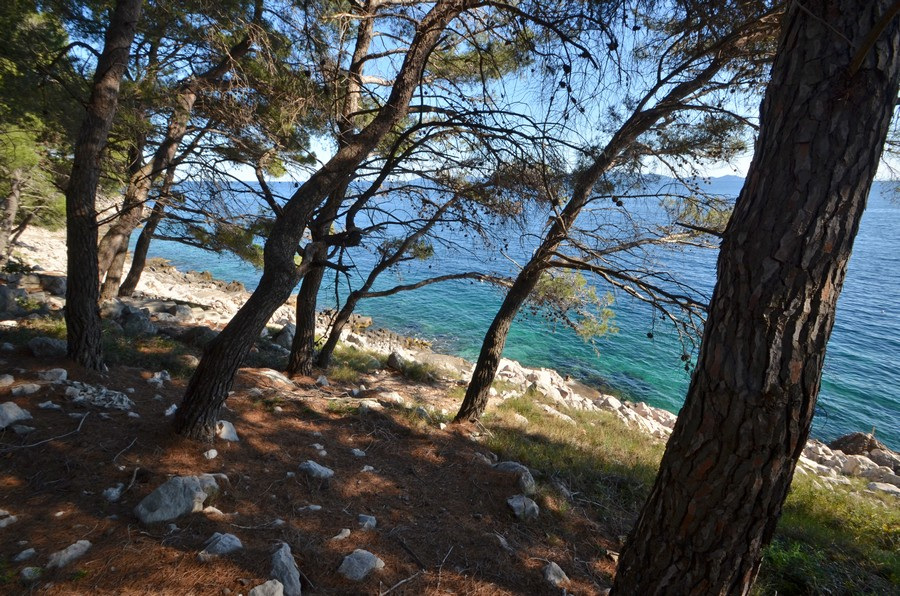 Korcula-apartments-prizba-surjan-Beach-15
