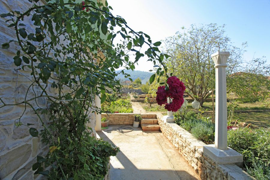 Korcula-Vela-Luka-Apartments-Paric-House-04