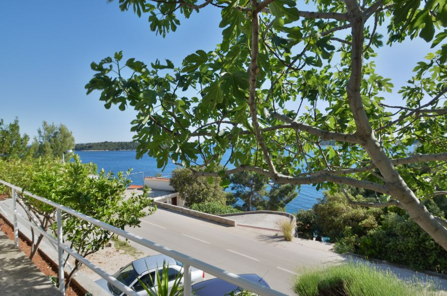 korcula-prizba-apartments-sardelic-house-02