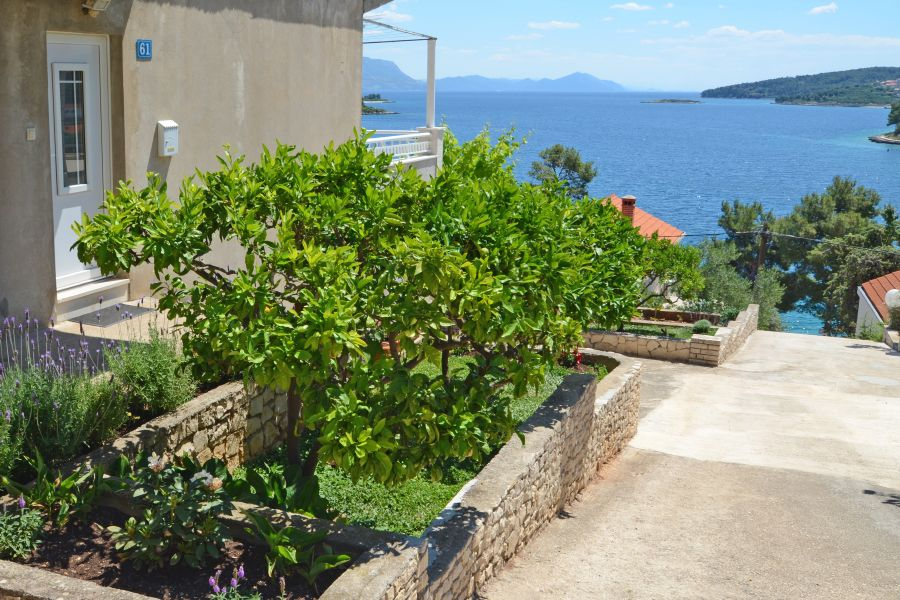 korcula-lumbarda-apartments-vukas-house-01