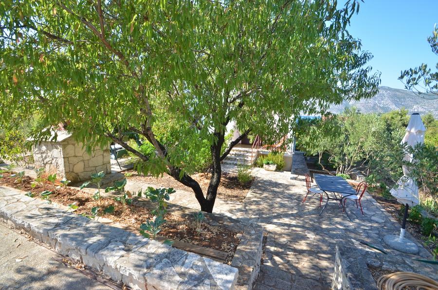 korcula-kneze-apartments-anton-backyard-02