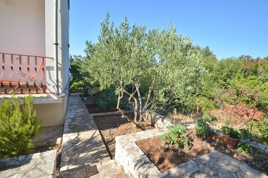 korcula-kneze-apartments-anton-backyard-03
