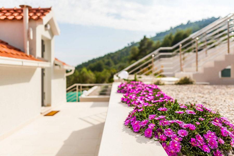 Villa-ileana-intorno-the-house-02