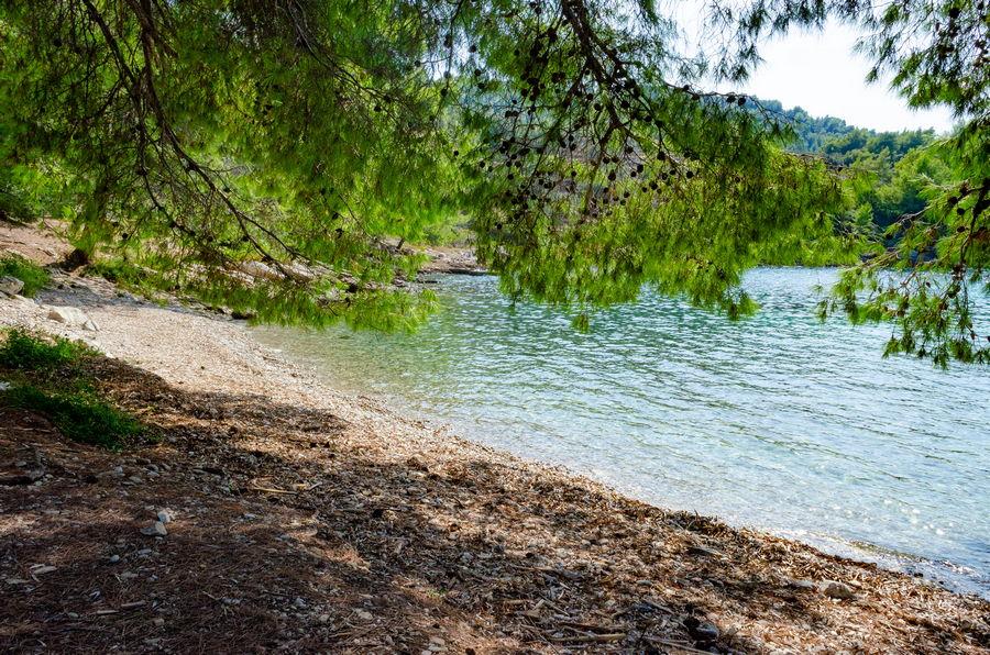 Korčula-Apartmani-poplat-vela luka-Sam-plaža-12