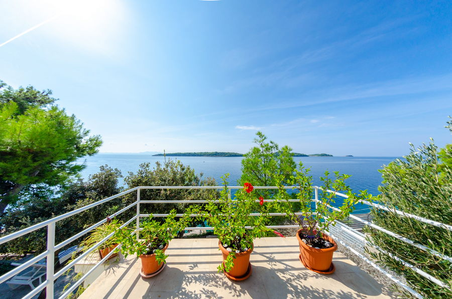 Korcula-Prizba-Apartments-Danko-House-Flowers-09-2018-slika-01