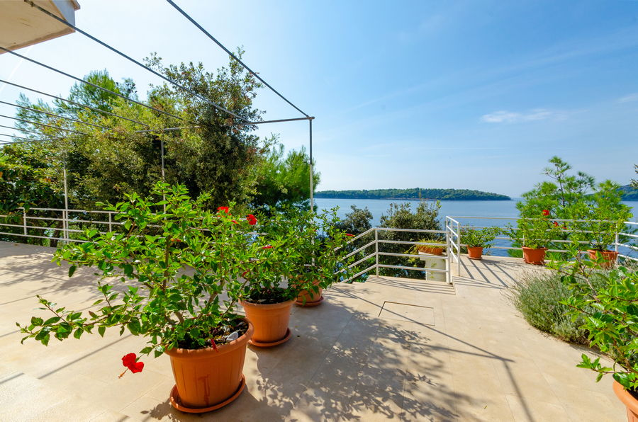 Korcula-Prizba-Apartments-Danko-House-Flowers-09-2018-slika-03
