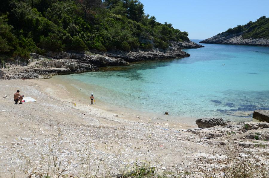 žitna-Korčula-zavalatica