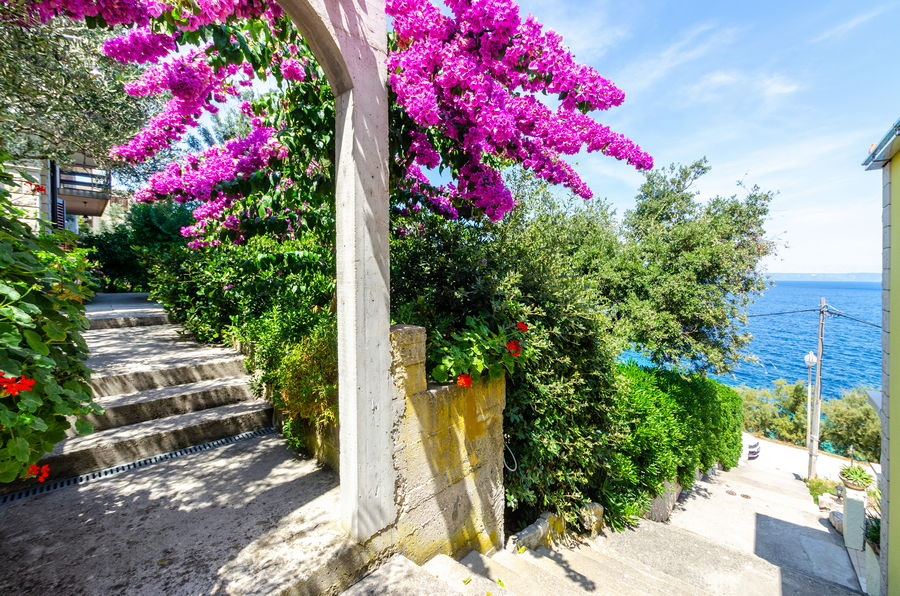 korcula-prigradica-apartments-vlajna-house-garden-entrance-08-2019-PIC-06