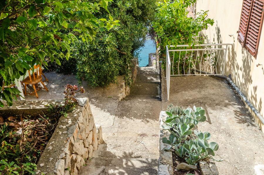 korcula-prizba-apartments-marta-diana-haus-10-2019-pic-02